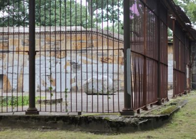 The Bear Cages
